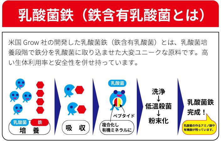 乳酸菌鉄の製造方法